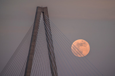 Ravenel Bridge Moonrise