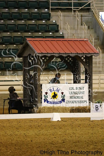 2020 BLMs and Harvest Moon Dressage Show