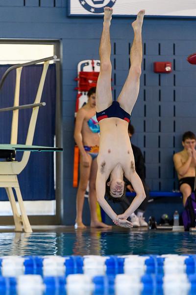 TWHS Jan 10, 2017 Diving