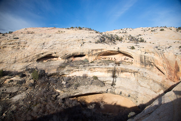 Natural Bridges, Petrified Forest, Grand Canyon NP's