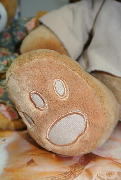 Bear 'Pullo' 03.JPG