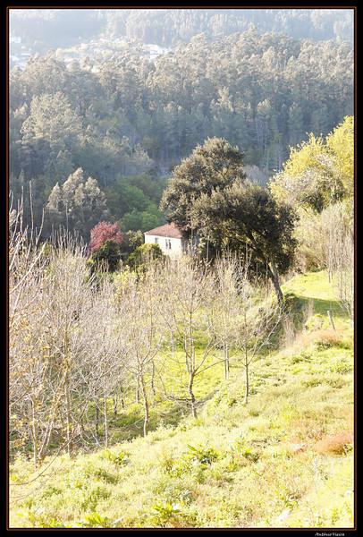 Vouga - 29-03-2008 - 5644.jpg