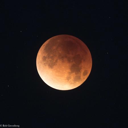 Blood Moon - 1/31/2018