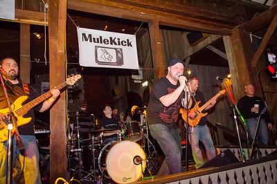 NYE Party with MuleKick Band