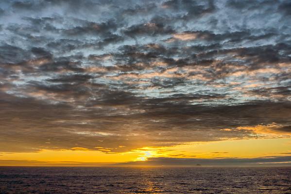 Stewart Island