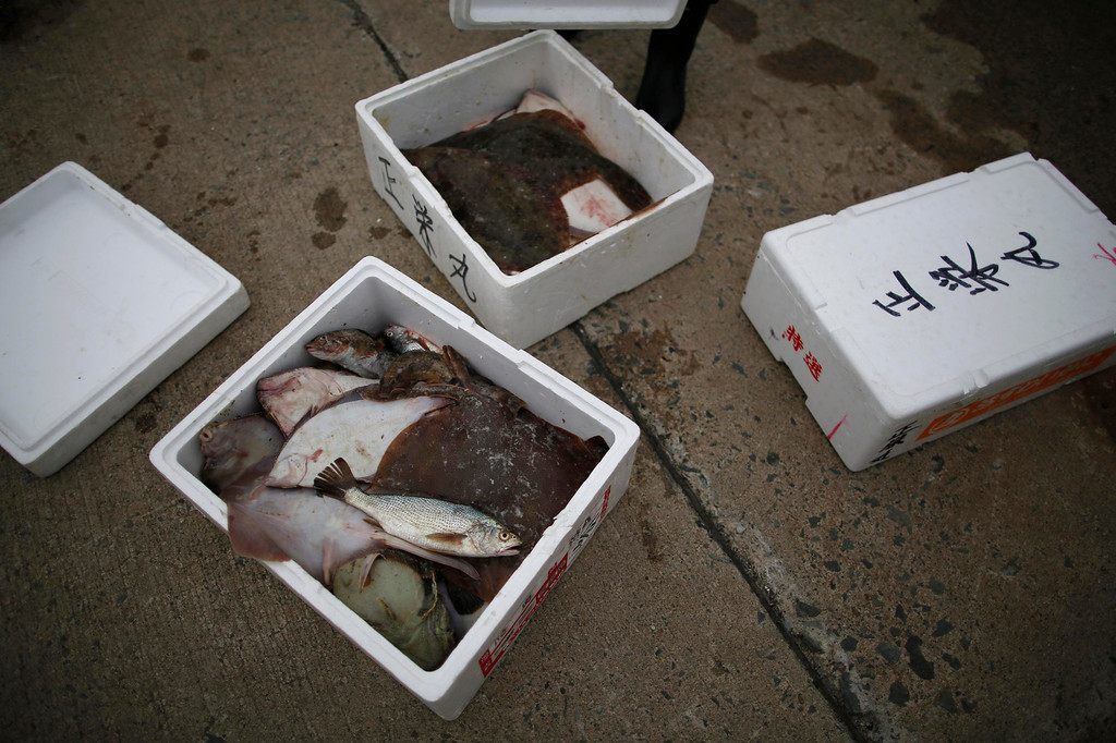 ". Flatfish, stonefish, flounder, greenling and ray caught by the ""Shoei Maru\"" fishing boat lie in boxes in Iwaki, Fukushima prefecture May 26, 2013. Operated by 80-year-old Shohei Yaoita and 71-year-old Tatsuo Niitsuma, the boat\'s catch will be used to test for radioactive contamination in the waters near the Fukushima Daiichi nuclear facility. Commercial fishing has been banned near the tsunami-crippled nuclear complex since the March 2011 tsunami and earthquake. The only fishing that still takes place is for contamination research, and is carried out by small-scale fishermen contracted by the government. Picture taken May 26, 2013. REUTERS/Issei Kato"