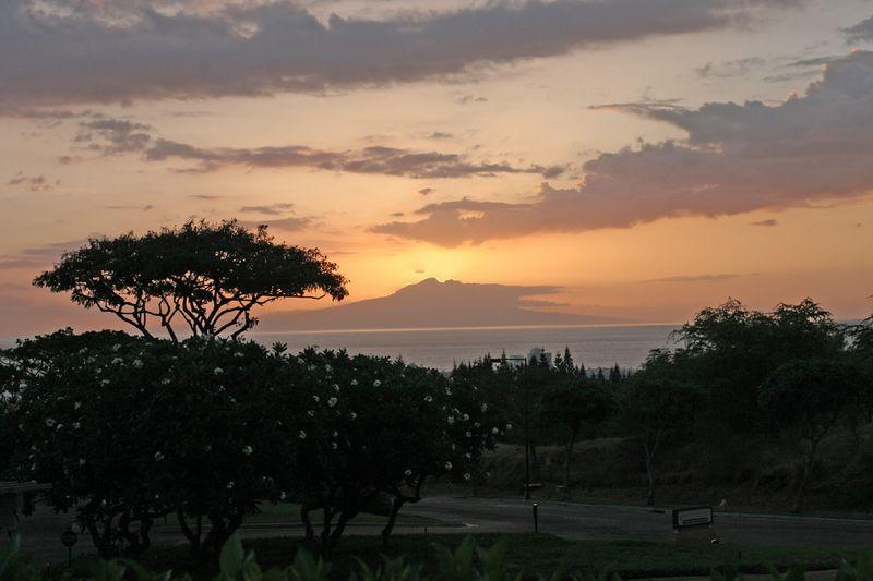 Mulligan Sunset