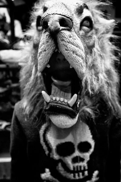 lion mask 2.jpg
