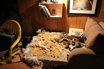 Couch Destruction
