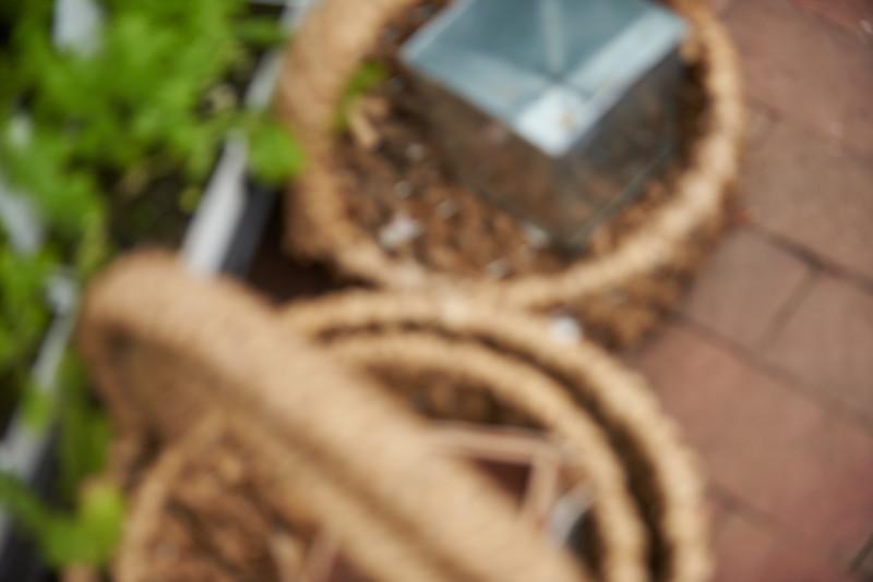 SGK_0183.jpg-crop.jpg