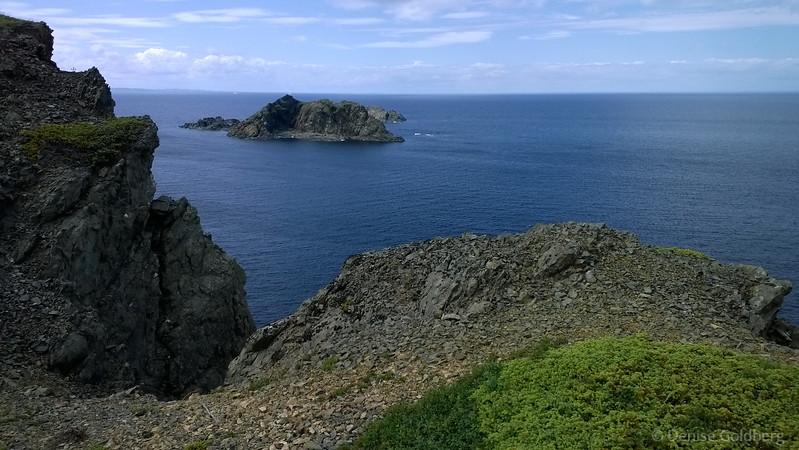 a rocky coastline, Twillingate, Newfoundland
