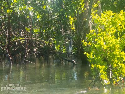 September 27th Kayaking Adventure!