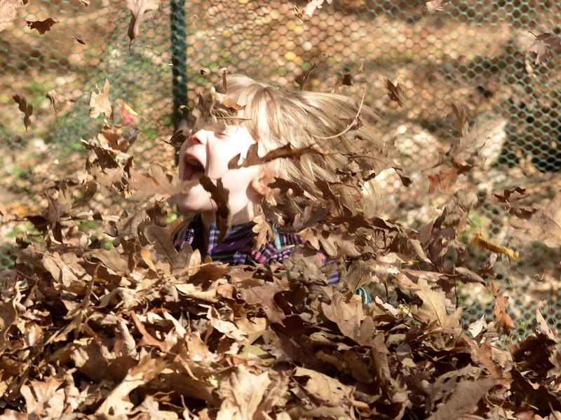 Fall 2013 General Photos