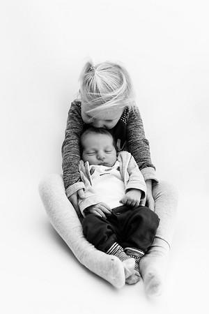 Newbornshoot Houten