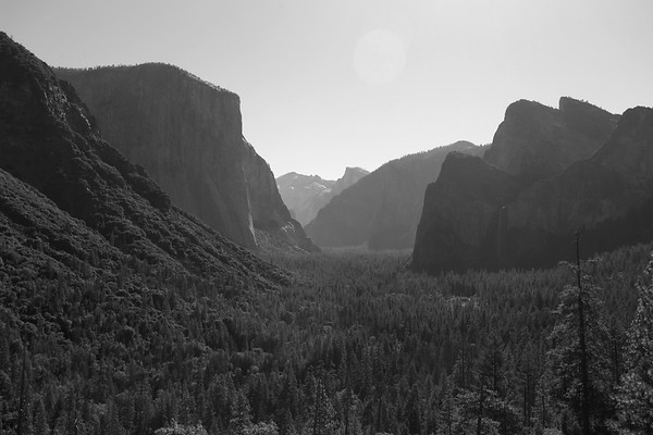 Yosemite National Park - July 2020