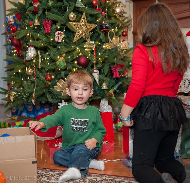 DeLaune Christmas ,December 22, 2018,-54.jpg