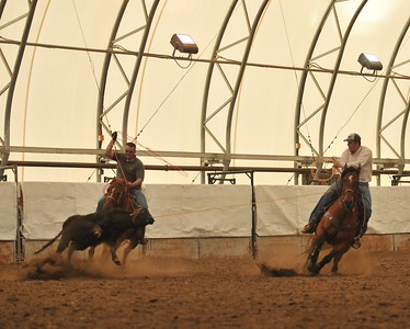 2011 Olds Poker Roping