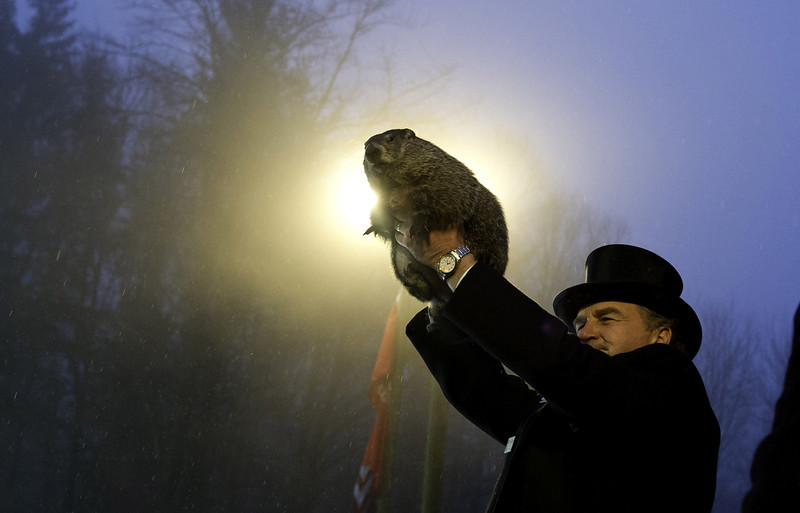 . Groundhog handler John Griffiths holds Punxsutawney Phil after he saw his shadow predicting six more weeks of winter during 128th annual Groundhog Day festivities on February 2, 2014 in Punxsutawney, Pennsylvania. Groundhog Day is a popular tradition in the United States and Canada. A smaller than usual crowd this year of less than 25,000 people spent a night of revelry awaiting the sunrise and the groundhog\'s exit from his winter den. If Punxsutawney Phil sees his shadow he regards it as an omen of six more weeks of bad weather and returns to his den. Early spring arrives if he does not see his shadow, causing Phil to remain above ground. (Photo by Jeff Swensen/Getty Images)