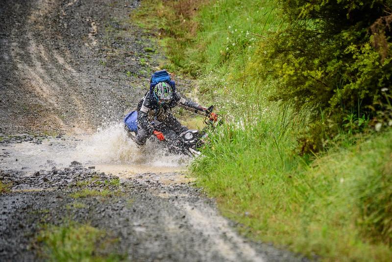 2018 KTM New Zealand Adventure Rallye - Northland (374).jpg