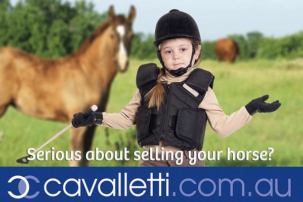 Peel Metro Horse and pony Club Sponsors