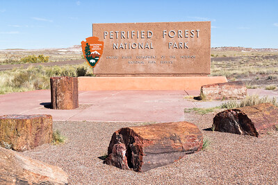 Arizona Adventure, Part 1 - Petrified Forest and Painted Desert