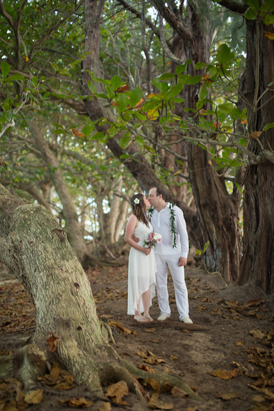 natasha-boris-kauai-wedding-112.jpg