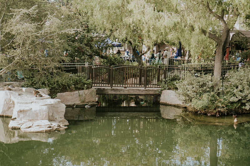 Disneyland with the Ford Family-325.jpg