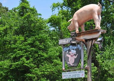 Blue Ridge Pig, Nellysford VA