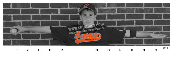 10x30 Panoramic Player Posters