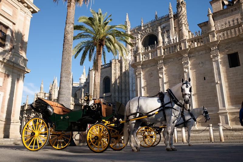 Seville April 2019 - X70-91.jpg