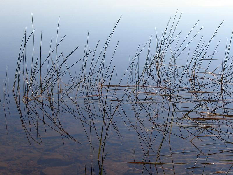 Reeds Nrthn Lght Lake0001.jpg