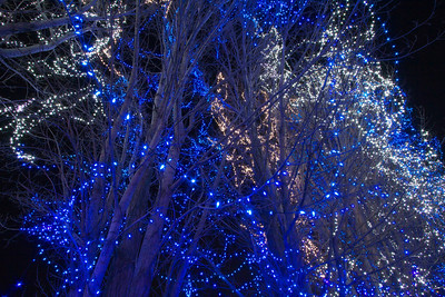 2010-12 Trail of Lights