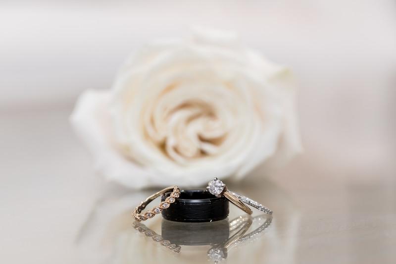 Houston Wedding Photography - Lauren and Caleb  (244).jpg