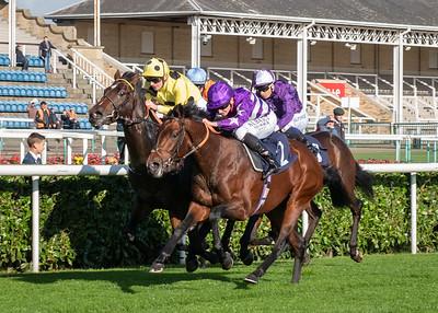 Doncaster Races - Fri 22 October 2021