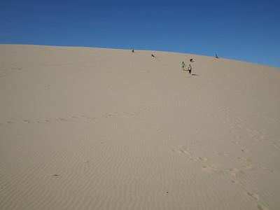 Eel Creek and Oregon Dunes