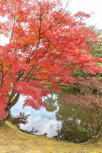 Kyoto12042018_153.jpg
