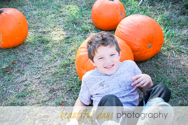 Patrick & Jamie's Family | Pumpkin Patch Mini 10.15.2017