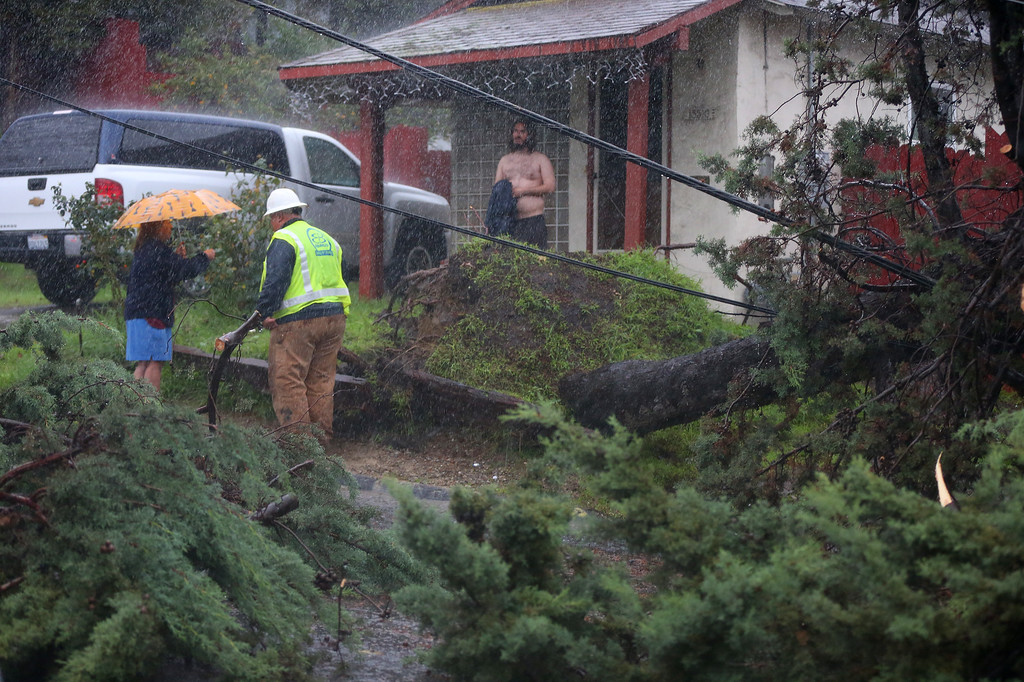 . Resident Mariam Bolado, left, talks with a worker from the East Bay Municipal Utility District after a tree in her front yard fell onto a car and knocked over a utility pole along Tanager Avenue on Thursday, Dec. 11, 2014, in San Leandro, Calif.   (Aric Crabb/Bay Area News Group)