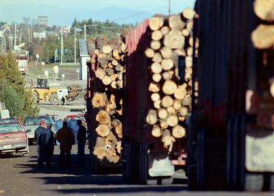 Loggers Blockade 1998
