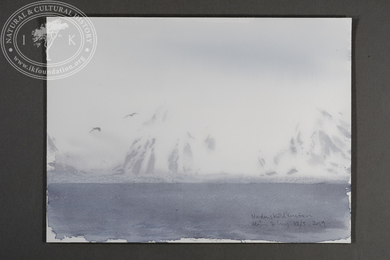 "The Nordenskiöld coast in fog | 12.5.2019 | ""I want to convey what I see with immediacy and simplicity to make the viewer feel present on the Arctic scene."" 
