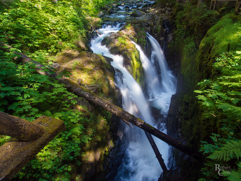Falling Water on the Olympic Peninsula