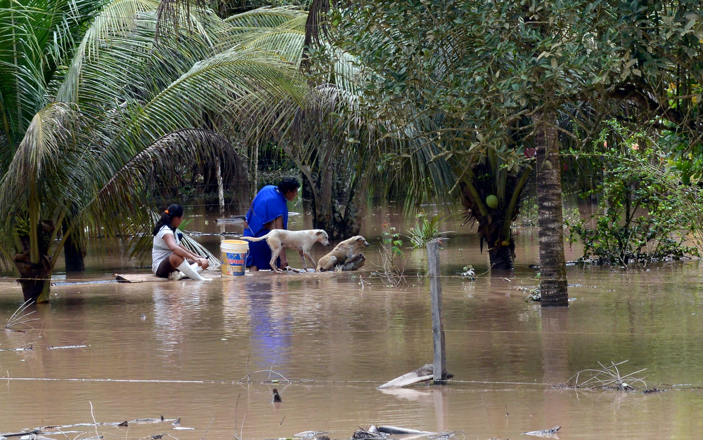 . Local try to recover belongings in an area flooded by the overflowing of the Beni river and heavy rains hitting the country, in Reyes, department of Beni, northeast Bolivia, on February 2, 2014. (AIZAR RALDES/AFP/Getty Images)