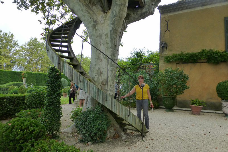 The curved stairs lead to the room in the tree.