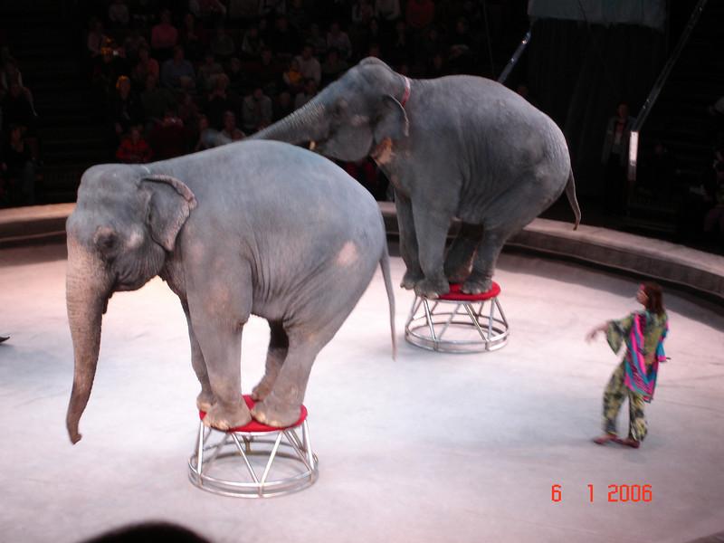 2006-01-06 Цирк с Капраловыми 35.JPG