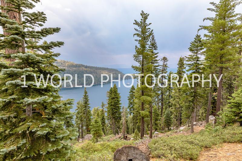 San Fran_Lake Tahoe Trip 2017-168-15.jpg