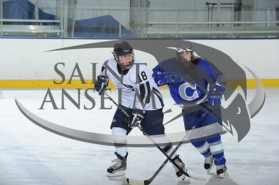 Women's Ice Hockey vs. Colby (01/01/10) - Courtesy Gil Talbot