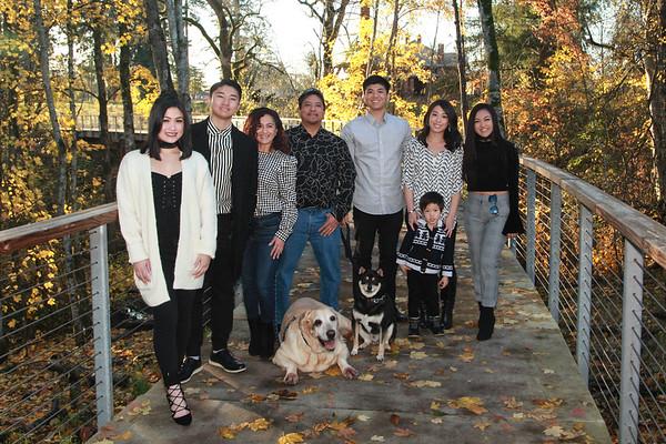 Calotis Family preview Nov 2017