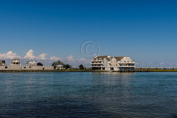 Assateague Island, MD