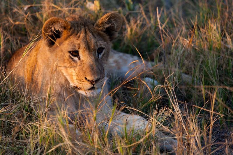Botswana-51.jpg