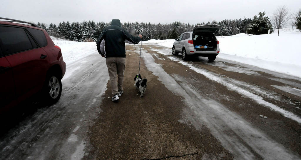 . Every Dog Counts Rescue volunteer Craig Cimino walks Chloe at a transfer stop in Rockford, Ill., last Saturday morning. Chloe was one of 11 dogs and 6 puppies that were transported across 3 states in the hopes of finding foster homes in the Twin Cities. (Pioneer Press: Sherri LaRose-Chiglo)